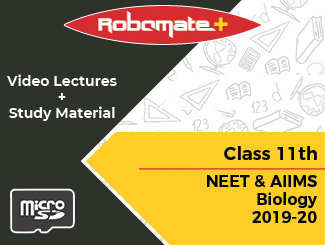 Class 11th NEET and AIIMS Biology Video Lectures 2019-20 (SD Card)