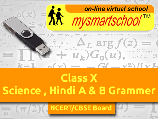 Class 10 Cbse Pen Drive Course Covering Science Hindi A B Grammer